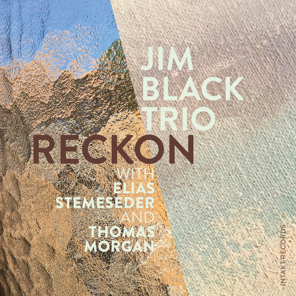 Jim Black Trio